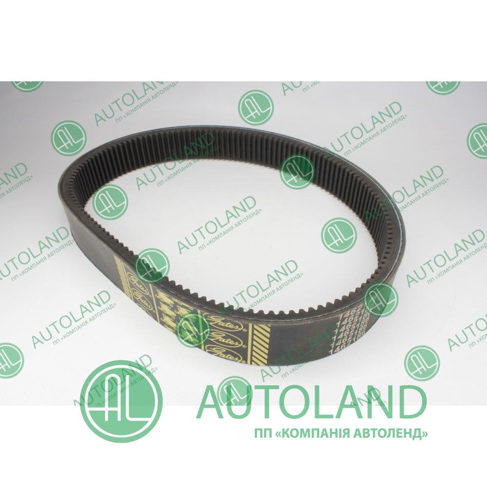 Варіаторний комбайновий ремінь (40J900), 40*13*920mm, 1462186 Gates Agri - Claas